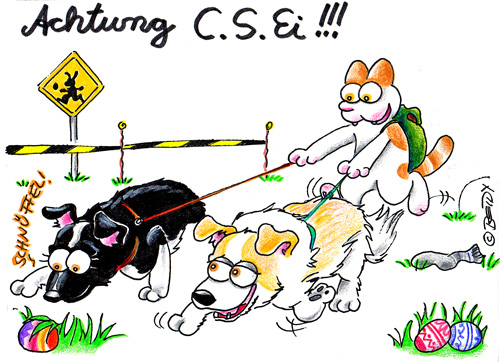 Achtung-C.SHP