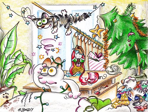 Weihnachtskater12-14